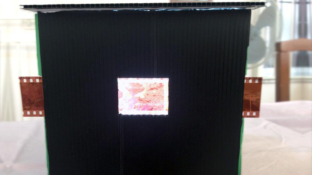 negativi acquisiti con reflex digitale