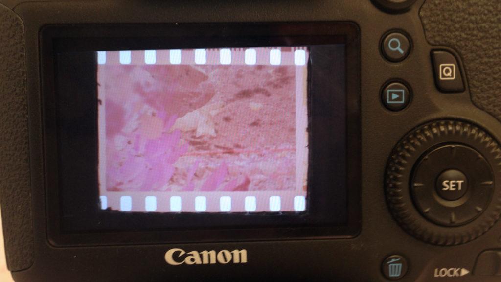 negativi 35mm scansione