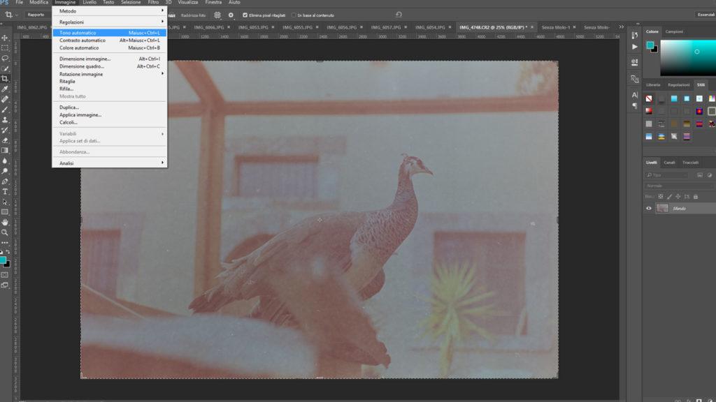 negativi 35mm su photoshop